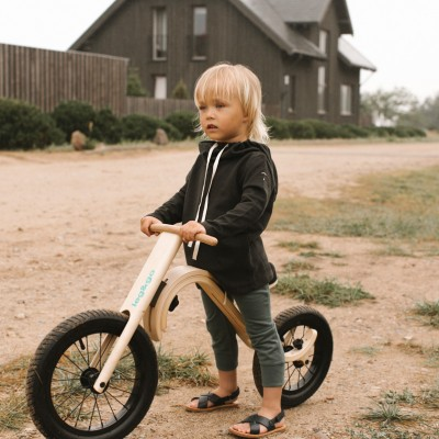 ScandiBike- LITEN PAKKE: Barnesykkel (3 i 1), Gynge-elefant, Pedalsykkel.